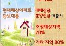 조정지역 기타지역 아파트매매잔금대출 분양잔금대출 70~80% 보험사MI대출 현대해상아파트담보대출
