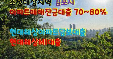 조정대상지역 김포시 아파트구입자금대출 최대80% 내 집마련에 도움된 현대해상아파트담보대출 보험사 현대해상MI대출